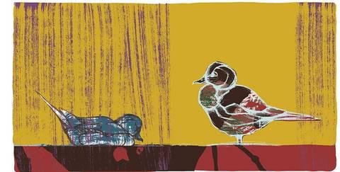Bilde av Brunnakke og stjertand av Gunilla Holm Platou m/ramme