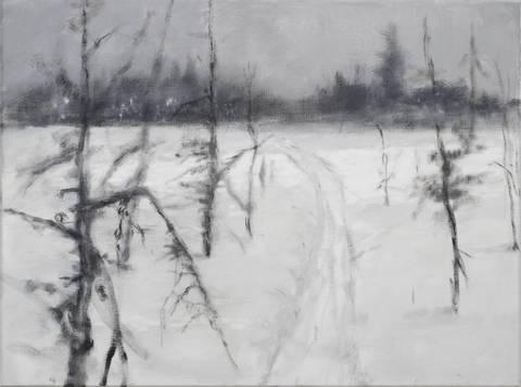 Bilde av Fra serien Myrfrise. Vinter 2 av Kjetil Haug