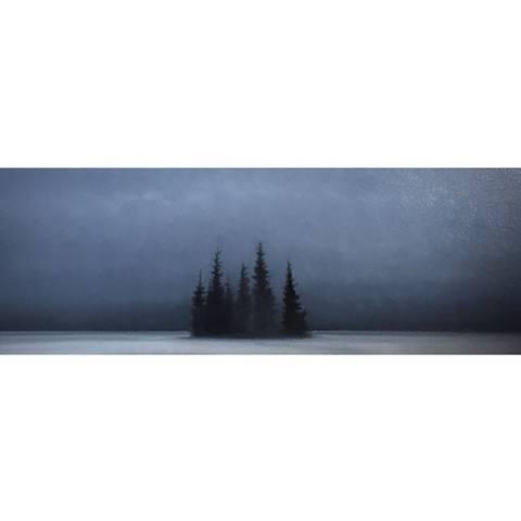 Bilde av Vinterskog av Christopher Rådlund